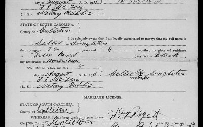Found on FamilySearch: Colleton County, South Carolina Marriage Licenses, 1911-1951