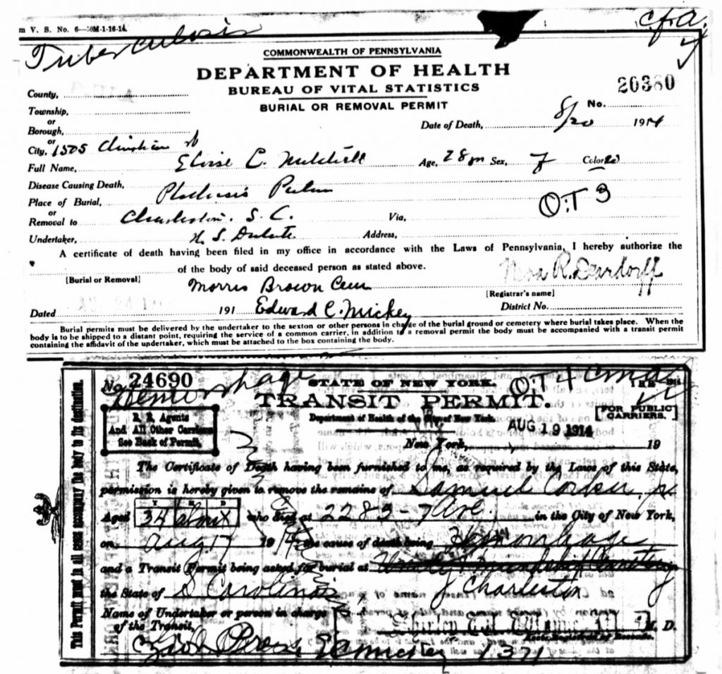 South Carolina, Death and Transport Records Elouise Mitchell